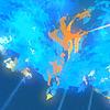 fierybluebird: (phoenix zoom!)