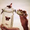 writing2death: (Random - butterfly away)