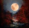 komiiro: (Moon)