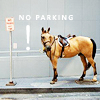 fadagaski: (no parking)
