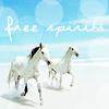 fadagaski: (horse free spirit)