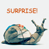 fadagaski: (surprise snail)