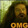 palsgraf_polka: (Hagrid OMG)