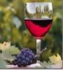 hana239: (вино)