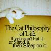 athra: ([misc] cat philosophy)