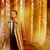 janice_lester: Castiel strides through a golden forest (Cas in forest SPN)