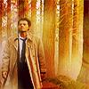 janice_lester: Castiel strides through a golden forest (Cas in forest SPN)