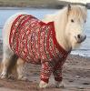 sunnymodffa: (Fair Isle sweater Shetland pony)