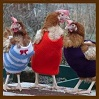 sunnymodffa: (Sweater Cocks)