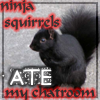 ravenology: (Ninja squirrels)