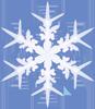 halloranelder: (Snowflake)