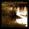 zimshan: (DC - Landscape)