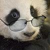 carmelist: (панда)