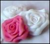annush: (roses)