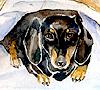 tamara_borisova: (собака с имиджем)