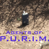 seekingferret: Photo of the gragger from the Season 1 Agents of SHIELD finale, with the text Agents of P.U.R.I.M. in the SHIELD font. (purim, shield)