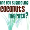 bixasaurus: (coconuts)