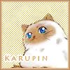 pontalovr: (karupin)