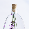 revolutions: Lavender preserved in a bottle. (bottled lavender)