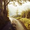 smhoward: (open road)