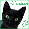 vilakins: (sebastian)