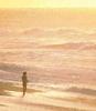 aphonicbabel: (Sunrise)