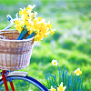 inspringthedawn: (springtime adventures)