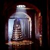 snowflakie06: (dalek danger lurks doctor who)