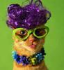 murrka: (purple cat) (Default)