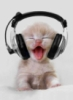 murrka: (music)