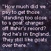 umadoshi: (Newsflesh - too close to a goat (kasmir))