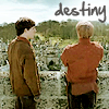 skywindsong: (destiny)