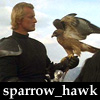 sparrow_hawk_ua: (uphawk)