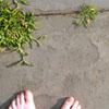 minerva42: (barefoot)