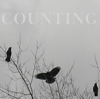 darkemeralds: Crows high in the branches of a bare tree, caption COUNTING (Crows)