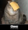 rabswom: (cheez doing it wrong)