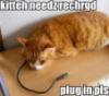 rabswom: (kitty needs recharged)