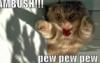 rabswom: (pew pew pew ambush!)