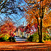 burnishedvictory: (Autumn scene)