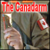 rusty_armour: (canadaarm)