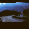 scallion: night view through rear window of car (backwards)