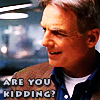 ladyoflisquill: (NCIS - Gibbs!Are you Kidding by domaris6)