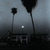 scallion: black and white picture of a house at night, with 2 palm trees (beacon)