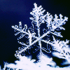skaredykat: (snowflake)