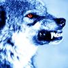 sheriffwolf: (BigBadSnarl)