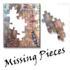 carefreespirit: (missing pieces)