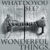 "darkemeralds: Photograph of the seal on King Tut's tomb, with the words ""What do you see?"" and ""Wonderful Things!"" (Wonderful Things)"