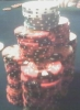 shipitfish: (u-club-stack-2006-02)