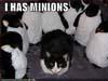 alphawench: (Minions!)