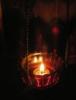 iocepha: (lampada)
